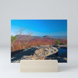 Fall In The Blue Mountains Mini Art Print