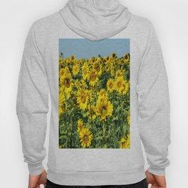 Field of Sunflowers-2 Hoody