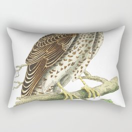 Falcon or Brown Falcon  from The Naturalists Miscellany (1789-1813) by George Shaw (1751-1813) Rectangular Pillow