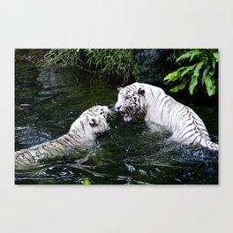 Tigers Fight Canvas Print