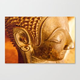 One of the five thousand Canvas Print