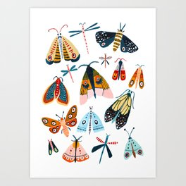 Moth Species Art Print