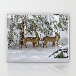 Keeping undercover Laptop & iPad Skin