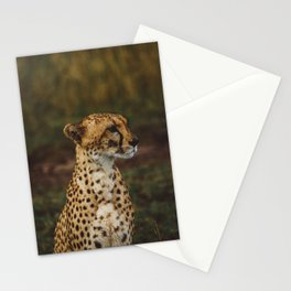 Patient Stationery Cards