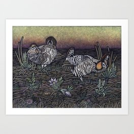 Prairie Chickens Art Print