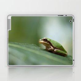 Mediterranean Tree Frog - Hyla meridionalis 8203 Laptop & iPad Skin