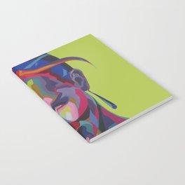 aa Notebook