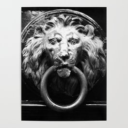 shot on iphone .. lion in brass Poster