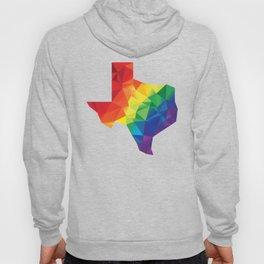 Geometric Pride Texas Hoody