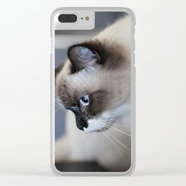 Ragdoll Cat Clear iPhone Case
