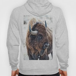 Bison the Mighty Beast Hoody