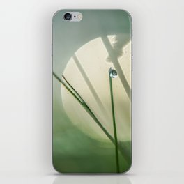 Mysterious world of morning dew iPhone Skin