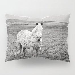 Appaloosa Horse | Western Art Pillow Sham
