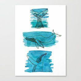 Three whales Canvas Print