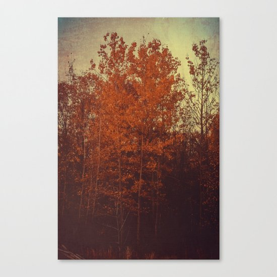 Days Undone Canvas Print