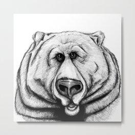 A big, cuddly, grizzly bear! Metal Print