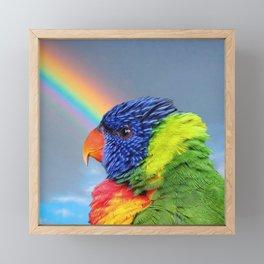 Rainbow Lorikeet Framed Mini Art Print