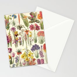 Adolphe Millot - Bromeliacees - liliacees - French vintage botanical illustration Stationery Cards