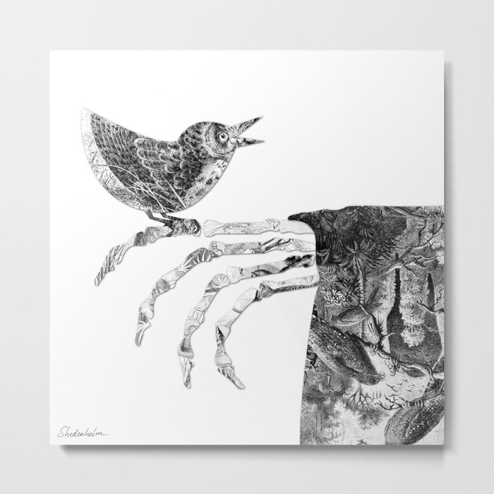 Death and the Nightingale Metal Print