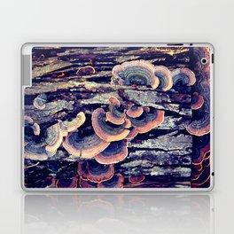 Wood Mushrooms Laptop & iPad Skin