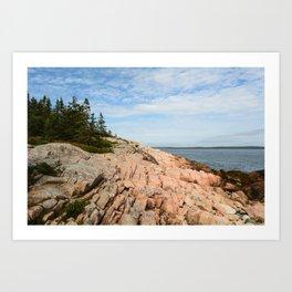 Coastal Life #2 - Travel Photography - Maine art - New England landscape - nature Art Print
