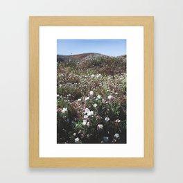 Spring in the Mojave Desert Grasslands Framed Art Print
