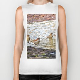 birds bath in the sun Biker Tank