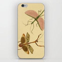 Naturalist Stick Bugs iPhone Skin