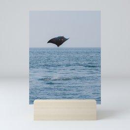 Flying Ray Mexico   Sea of Cortez, Baja California Sur   Wildlife Photography Mini Art Print