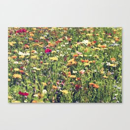 Happy summer meadow vintage style Canvas Print