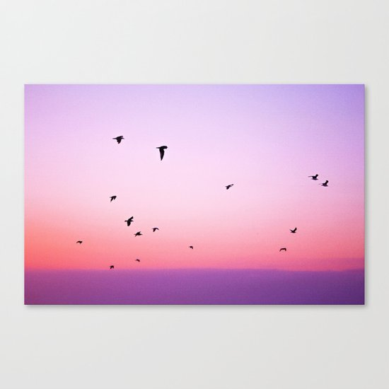 birds in the sky rose Canvas Print