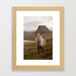 Kirkufell Pony Framed Art Print
