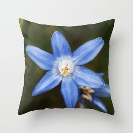 Snow glories Throw Pillow
