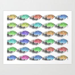 Swimming Fishies Art Print