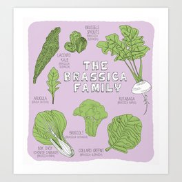 The Brassica Family Art Print
