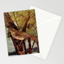 Neltje Blanchan - Bird Neighbours (1903) - Hermit Thrush Stationery Cards