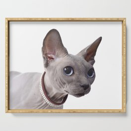 Canadian sphinx cat Serving Tray