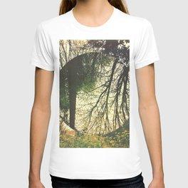 knnmore T-shirt