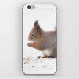 Squirrel And Lunch Pause Winter Scene #decor #society6 #buyart iPhone Skin