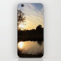 P A R A D I S E {I} iPhone & iPod Skin