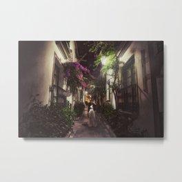 Mogan's garden Metal Print