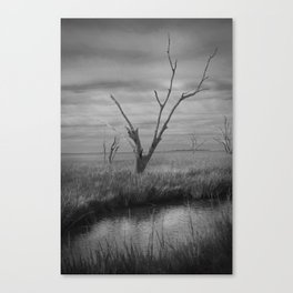 Death in the Afternoon Canvas Print