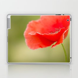 Miss you so much Red Poppy #decor #society6 Laptop & iPad Skin
