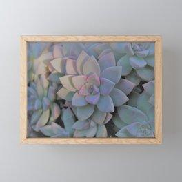 Ghost Plant Framed Mini Art Print