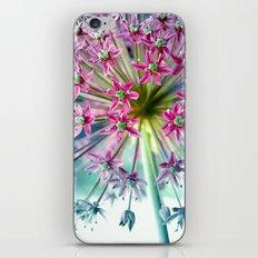 étoile iPhone & iPod Skin