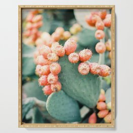 Opuntia - Ibiza - Nature photography Serving Tray
