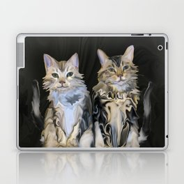 Marble Meows Laptop & iPad Skin