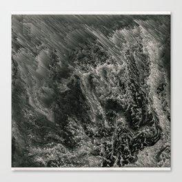 analog snow Canvas Print