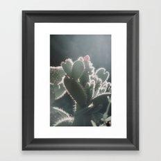 cactus hearts Framed Art Print