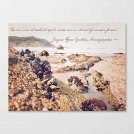 Ocean Wonder Canvas Print